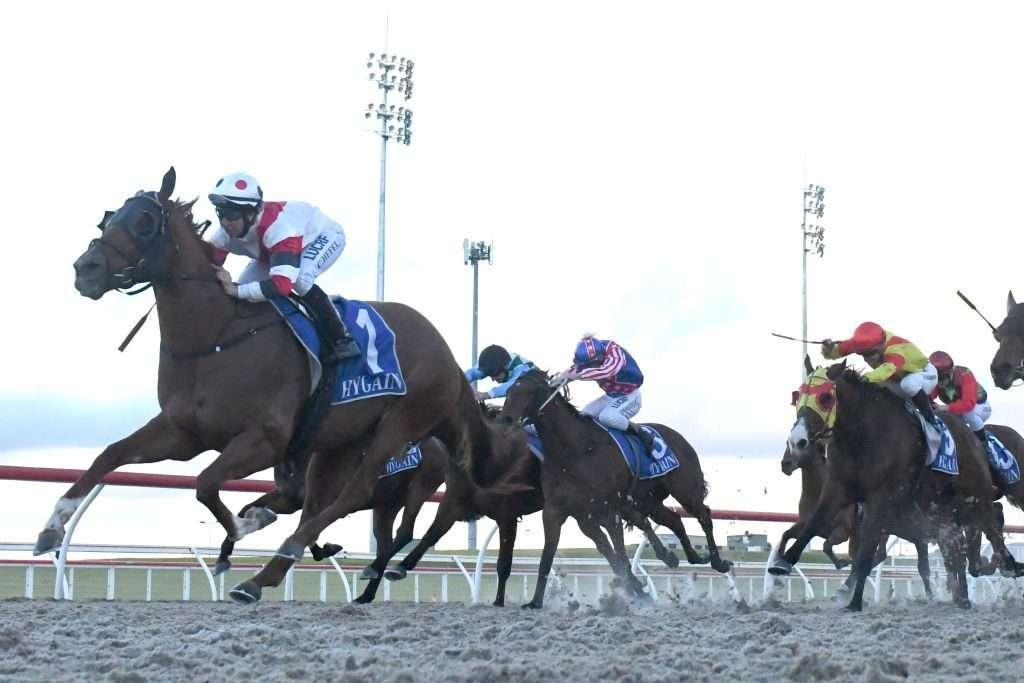 Horse race betting rules on blackjack handicap betting explained football helmets